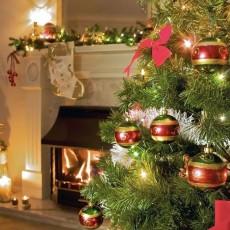 Что подарить на Новый год 2019? Варианты идеи новогодних подарков