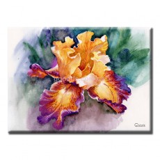 Картина Цветок ириса