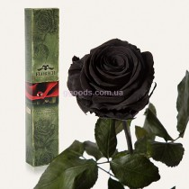 Долгосвежая роза Черный Бриллиант 7 карат