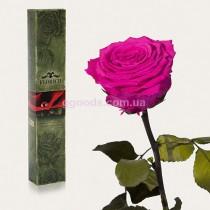 Долгосвежая роза Малиновый Родолит 7 карат