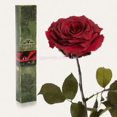 Долгосвежая роза Багровый Гранат 7 карат