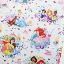 Бумага для подарков Принцессы 10 м