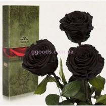 Долгосвежие розы Черный бриллиант 7 карат 3 шт