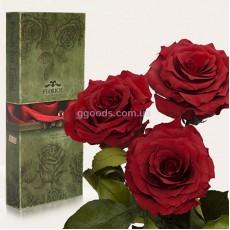 Долгосвежие розы Багровый гранат 7 карат 3 шт