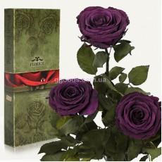 Долгосвежие розы Фиолетовый Аметист 7 карат 3 шт