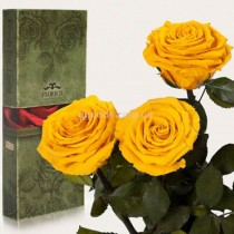 Долгосвежие розы Солнечный цитрин 7 карат 3 шт