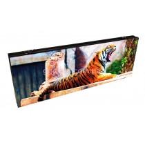 Стеклянные нарды Тигр